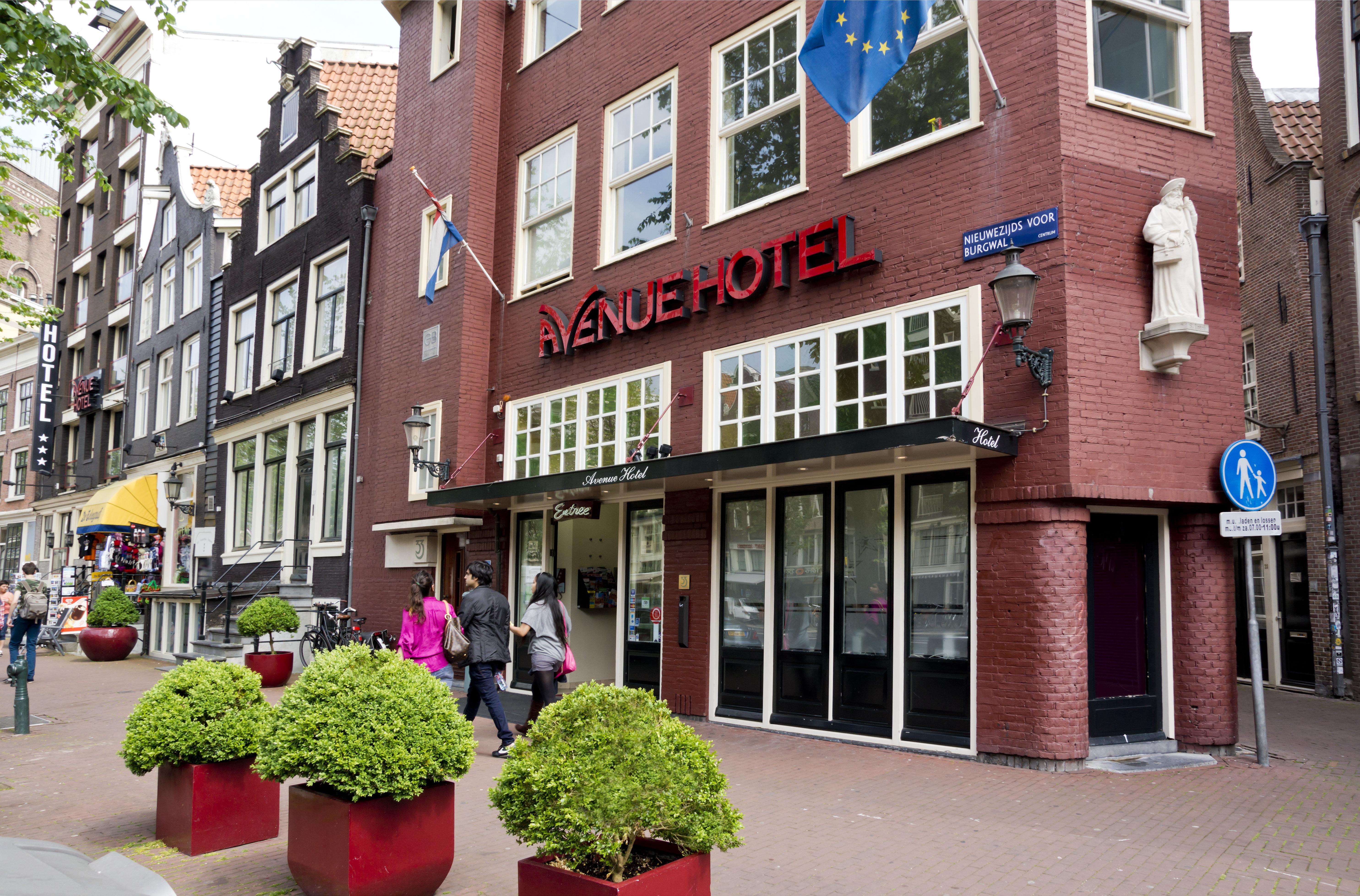 Киев амстердам аликанте отзывы